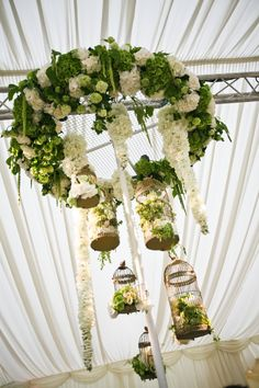 Stunning white and green floral chandelier, vintage birdcages, hydrangeas an roses
