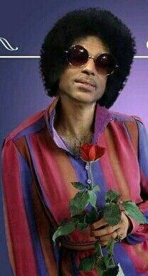 Yes Prince, I accept your rose🌹😘 Prince Images, Photos Of Prince, Starfish And Coffee, Prince Paisley Park, Prince Of Pop, Roger Nelson, Prince Rogers Nelson, Music Icon, Soul Music