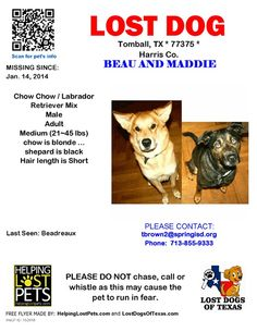 #lostdog #LDOT #TOMBALL  #TX  --Lost 2 dogs named #BEAU and #MADDIE  missing from TOMBALL TEXAS