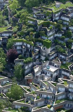 Green city!  #City #Garden #Rooftop #Garden #Architecture