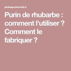 Purin de rhubarbe : comment l'utiliser ? Comment le fabriquer ?