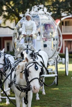 The beginning of a happily ever after at Disney's Fairy Tale Weddings & Honeymoons