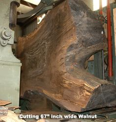 hearne hardwoods saw mill cutting exotic bastogne walnut wood