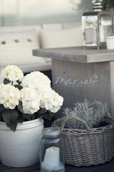White hydrangeas in white ceramic pot