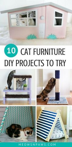 Put your hands to work and make something special for your cat. Here are 10 cool DIY cat furniture projects for you to try! No need to spend extra money on cat furniture when you can do it yourself. See how to make cat shelves, cat teepees, cat scratching post, cat tree, cat house, cat bed, litter box cover and much more! #cats #catfurniture #catentertainment #cathouseprojects