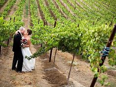 Southern california wedding venues wineries