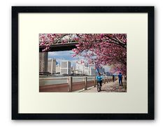 "Included in an Etsy Treasury ""Four Seasons"": Riding Under the Cherry Blossoms"