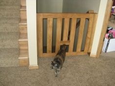 baby gate for steps with cat door