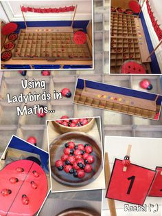 Number Recognition and Counting with Ladybirds - Stimulating Learning