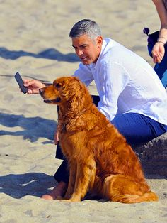 Rescate Animal - George Clooney and his dog I Love Dogs, Puppy Love, Cute Dogs, Mans Best Friend, Best Friends, Celebrity Dogs, Famous Dogs, Famous People, Dog Day Afternoon