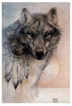 Susan Seddon Boulet: Wolf Spirit