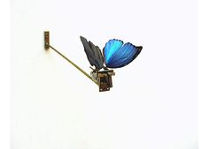 Rebecca Horn Butterfly