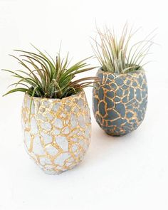 Mini Pineapple Planter WITH Air Plant/Modern Indoor Planter/Succulent planter/Hospitality/Office Decor/Small Space Decor/New Home Gift Concrete Crafts, Concrete Art, Concrete Planters, Painted Plant Pots, Painted Flower Pots, Pottery Painting Designs, Pottery Art, Indoor Planters, Diy Planters