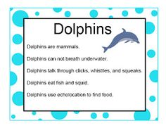 Brilliant Bundles: Dolphin Crafts and Activities for an Ocean Theme - Preschool
