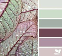 Ideas For Bathroom Colors Palette Design Seeds