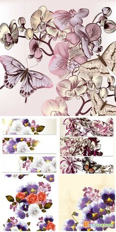 Floral backgrounds and banners, violet vector