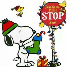 Dear Santa Please STOP Here!