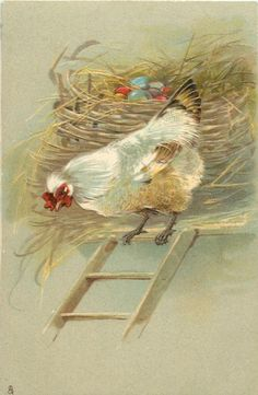 hen at top of ladder, nest with coloured eggs behind her Chicken Pictures, Bird Pictures, Vintage Pictures, Vintage Birds, Vintage Easter, Vintage Art, Vintage Greeting Cards, Vintage Postcards, Rooster Art