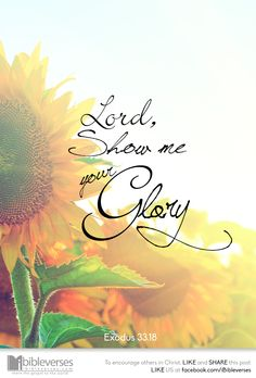 Then Moses said : If you are pleased with me, Now show me your glory. Exodus 33. This is how God is so good :)