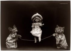 Just some cats playing jump rope with a doll. You know, nothing unusual.