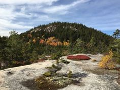 UNH Trail to Hedgehog Mountain is a 4.6 mile lightly trafficked loop trail located near Conway, New Hampshire that offers the chance to see wildlife and is rated as moderate. The trail is primarily used for hiking and is accessible from May until November.