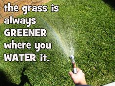 water the grass!