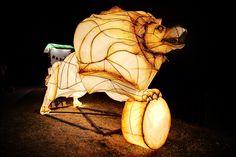 Lion Lantern 1   by Danial79