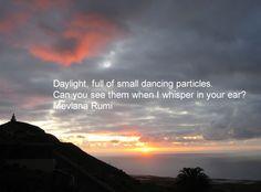 Rumi - Daylight full of...