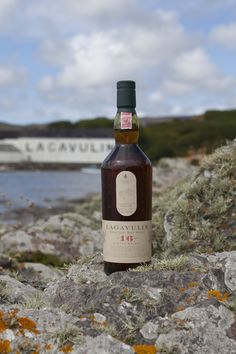 Lagavulin (or Talisker), powerful flavours but be bold; scallops and bacon/dark chocolate, anchovy-based spreads/hot-smoked salmon Bottarga/Haggis/smoked chicken/mature farmhouse cheddar/trong blue cheeses, especially Roquefort ;-)