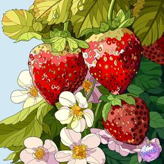 Coloring Apps, Paint By Number, Food Art, Strawberry, Fruit, Creative, Painting, Inspiration, Numbers