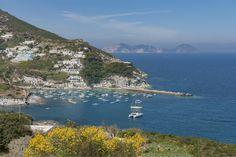 venite a visitare la splendida Isola di Ponza