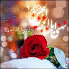 Eid Mubarik, In A Heartbeat, Rose, Flowers, Plants, Imam Hassan, Islamic, Ali, Children