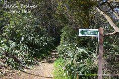 Muy cerca de la ciudad, respirá aire puro en contacto con la naturaleza, mientras aprendes sobre la flora autóctona! http://www.tucumanturismo.gob.ar/evento/2178/jardin-botanico-horco-molle