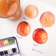 """How to draw a peach very fast😄"" Always paint on wet 💦🙌🏼 p. Watercolor Fruit, Fruit Painting, Easy Watercolor, Watercolor Artwork, Watercolor Illustration, Watercolor Painting Techniques, Watercolor Projects, Sketch Painting, Watercolour Tutorials"