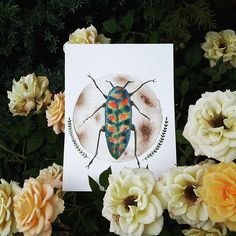 Another one from the beetles series.  DM me if you're interested in buying 😊  #painting #art #artist #artwork #instaartist #illustration #instagood #gallery #creative #photooftheday #nature #decor #design #drawing #draw #sketch #moon #watercolor #paint #beetle #animal #garden #roses #color #rainbow #photography  #imbw #artemperor #plants #bugs