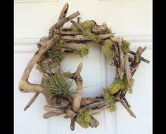 Driftwood, Moss & Air Fern