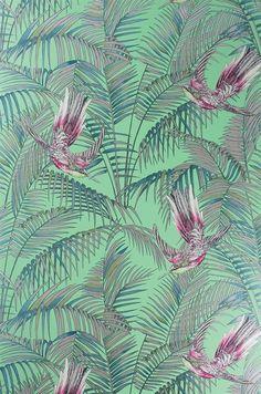 Sunbird wallpaper, Matthew Williamson for Osborne & Little: W6543-03