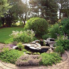 A series of small, interconnected pools  cascade from the back deck to a paving stone patio. Purple blooms of thyme alternate with creeping penstemon in the foreground, while hostas and pale yellow columbines accent the upper tiers.