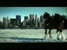 Budweiser 9/11 tribute commercial -- See if you can watch this without crying.  These horses were actually trained to do that bow.  Kudos to Budweiser for this outstanding tribute.