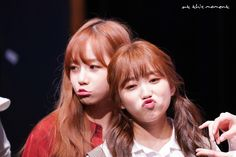 Fan Signs, Japanese Girl Group, Kpop Groups, Yuri, Pinterest Board, Jade, Mood, Twitter, Hipster Stuff