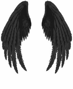 Black wings PNG image with transparent background Angel Wings Png, Angel Wings Drawing, Demon Wings, Raven Wings, Black Angel Wings, Ange Demon, Black Angels, Fallen Angel Wings, Tattoo Son