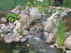 http://aqua-landscapes.com/uploads/images/Gallery/Ponds/IMG_0866.JPG