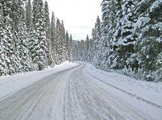 Winter.Võsu.Estonia.