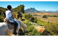 Randonnée dans les vignobles d'Afrique du Sud #vignobles #afrique