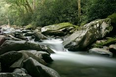 Walker Camp Prong - Great Smoky Mountains National Park by gatlinburg-cabins, via Flickr