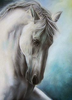 Horse art - title Elegance, in oil pastel - by Gile Pretty Horses, Horse Love, Beautiful Horses, Animals Beautiful, Beautiful Gorgeous, Horse Drawings, Animal Drawings, Horse Artwork, White Horses