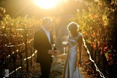 Calistoga Ranch Solage Resort Elopement Wedding Photography | Enluce San Francisco Bay Area Napa Sonoma Wine Country Wedding Photographer