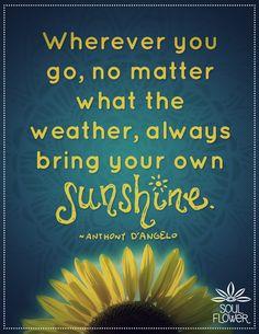 Soul Flower #dangelo #quote #sunshine #sunflower