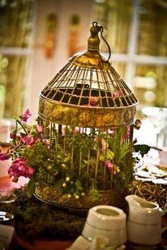 Happy Anniversary Lida & Jonathan - A Colorado shabby chic wedding! Bodas Shabby Chic, Shabby Chic Decor, Bird Cage Centerpiece, Centerpiece Ideas, Tree Shop, Bird Cages, Happy Anniversary, Bird Houses, Wedding Centerpieces