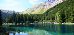 Baja Austria, un estado que usa 100 % energía renovable - http://www.absolutaustria.com/baja-austria-un-estado-que-usa-100-energia-renovable/